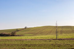 Farm landscape in spring season Royalty Free Stock Photos