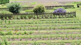 Farm landscape Royalty Free Stock Photography