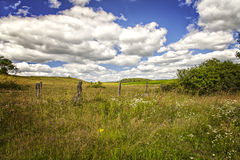 Farm landscape Sweden Stock Images