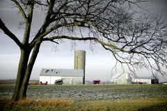 Farm Landscape in Winter Stock Image