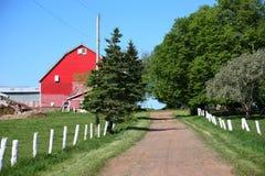Farm Lane stock images
