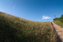 Farm lane through the fields Stock Images
