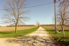A farm lane in the spring Stock Images