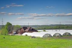Farm. Stock Photos