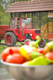 Farm life Stock Image