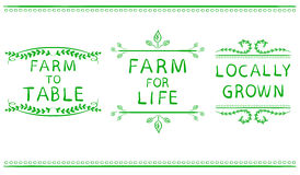 FARM FOR LIFE, FARM TO TABLE, LOCALLY GROWN. Hand drawn typographic elements isolated on white. Green lines. Stock Image