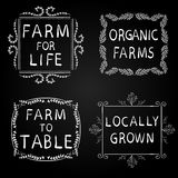 FARM FOR LIFE, ORGANIC FARMS, FARM TO TABLE, LOCALLY GROWN. Hand-drawn typographic elements on blackboard. White frames. Farming icons on black background Stock Photos