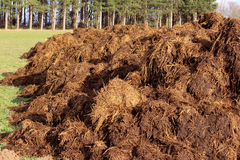 Farm manure Royalty Free Stock Images