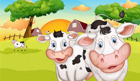 A farm with many cows. Illustration of a farm with many cows Royalty Free Stock Photography