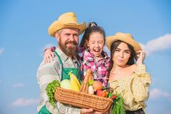 Farm market with fall harvest. Man bearded rustic farmer with kid and wife. Family father farmer mother gardener with stock images