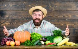 Farm market harvest festival. Sell vegetables. Man bearded farmer with vegetables rustic style background. Buy royalty free stock images