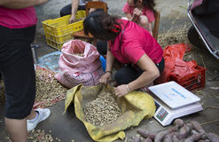 Farm market Stock Image
