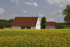 Farm in May with rape field, Osnabrueck Land region, Lower Saxony, Germany Royalty Free Stock Photos