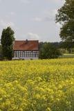 Farm in May with rape field, Osnabrueck Land region, Lower Saxony, Germany Royalty Free Stock Photos