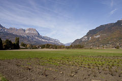 Farm and Meadow in Swiss Alps Royalty Free Stock Image