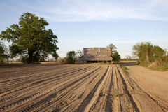 A farm, Mississippi. A farm in Clarkesdale, Mississippi Stock Photography