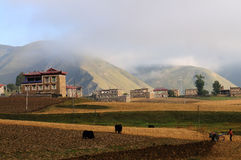 Farm in the morning of China Stock Image
