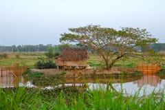 Farm Myanmar. Poor farm on the water in Myanmar Stock Photography