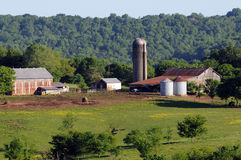 Farm on Natchez Trace. Historic southern working farm set against dense forest royalty free stock images