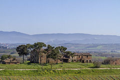 Farm near Montepulciano Royalty Free Stock Photo