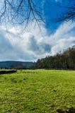 A farm near Rievauxl Abbey 2. A farm near the ruins of Rievauxl Abbey near Helmsley, United Kingdom Royalty Free Stock Image