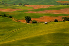 Farm Nestled In The Palouse Hills. This image shows the beautiful Palouse Hills with a a small farm nestled right in the middle in the state of Washington Stock Photo