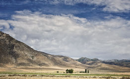 Farm, Nevada Desert. The trees and green grasses help to identify an isolated distant farm, an oasis located in the vast, stark desert landscape of northern Royalty Free Stock Photography