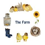 Farm objects and animals: gray fluffy hare rabbit, small yellow chick, nest with eggs, gumboots and sunflower isolated. Hand painted naturalistic watercolour royalty free illustration