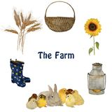 Farm objects and animals: gray fluffy hare rabbit, small yellow chick, nest with eggs, gumboots and sunflower isolated. Hand painted naturalistic watercolour vector illustration