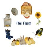 Farm objects and animals: gray fluffy hare rabbit, small yellow chick, nest with eggs, gumboots and sunflower isolated. Hand painted naturalistic watercolour stock illustration