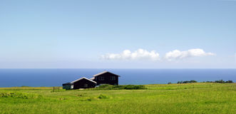 Farm by the ocean. A farm standing by the ocean on Big Island, Hawaii Royalty Free Stock Photography