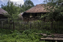 Farm. Old rural homestead surrounded by trees Royalty Free Stock Images