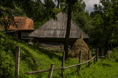Farm. Old rural homestead surrounded by trees Stock Photo