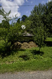 Farm. Old rural homestead surrounded by trees Royalty Free Stock Photo