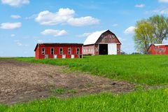 Farm in open field. Wooden red farm buildings in open  field on a Spring afternoon.  Bureau County, Illinois, USA stock image