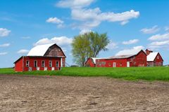 Farm in open field. Wooden red farm buildings in open  field on a Spring afternoon.  Bureau County, Illinois, USA stock photo