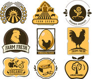 Farm and Organic Food icons Royalty Free Stock Photography