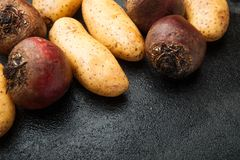 Farm organic potatoes and red beets, empty space for text stock image