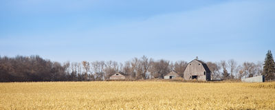 Farm panorama Royalty Free Stock Photography