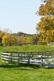 Farm pasture Stock Image