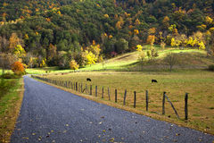 Farm and Pasture. In the fall, a road into a farm beside a fence and pasture Stock Photo