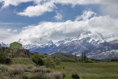 Farm Patagonia Argentina Royalty Free Stock Image