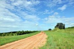 Farm path Stock Image