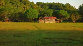 Farm in the Philippine countryside Royalty Free Stock Photo