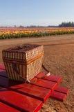Farm Picnic Stock Photos
