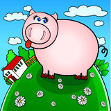Farm pig Stock Images