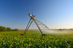 Farm Pivot Irrigation System Watering a Crop. A pivot irrigation system running in a farmer's field Stock Photography