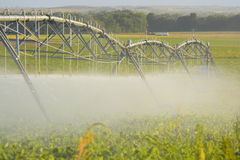 Farm Pivot Irrigation System Waters Farmer's Crop. Farm Pivot Irrigation System Waters a Farmer's Royalty Free Stock Images