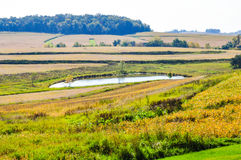 Farm Pond In Country. Small farm pond in a pasture stock image