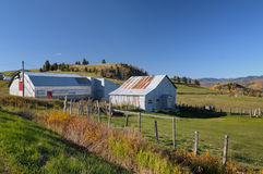 Farm in Quebec Stock Image